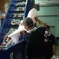 Vezi cum sunt distruse tigari in valoare de 1 mil. euro - Foto 14 din 22