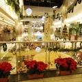 Mall-urile din Budapesta - Foto 9 din 10