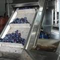 Fabrica de la Topoloveni - Foto 5 din 12