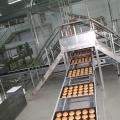 Fabrica de chifle McDonald's din Romania - Foto 10 din 10