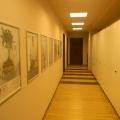 Biroul CMU - Foto 19 din 31