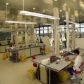 Vezi cum arata cel mai mare laborator de analize medicale din sud-estul Europei - Foto 6 din 6