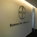 Bayer - Foto 5 din 24