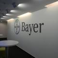 Bayer - Foto 1 din 24