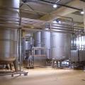 Inaugurare fabrica Tymbark Maspex Romania - Foto 2 din 12