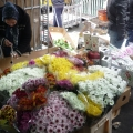 1 Martie in Piata de Flori (Bucuresti) - Foto 8 din 8