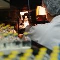 Fabrica Sindan Pharma - Foto 2 din 11