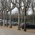 Stadionul San Siro + baza de pregatire Milanelo - Foto 25 din 51
