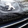 Peugeot 508 - Foto 1 din 18