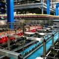 Depozitul complet automatizat High-Bay al Coca-Cola Ploiesti - Foto 6 din 31