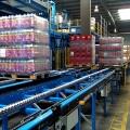 Depozitul complet automatizat High-Bay al Coca-Cola Ploiesti - Foto 12 din 31