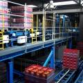 Depozitul complet automatizat High-Bay al Coca-Cola Ploiesti - Foto 16 din 31