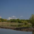 Fotografii din Delta cu Nikon D5100 - Foto 11 din 20