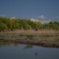 Fotografii din Delta cu Nikon D5100 - Foto 12 din 20