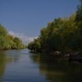 Fotografii din Delta cu Nikon D5100 - Foto 13 din 20