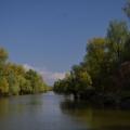 Fotografii din Delta cu Nikon D5100 - Foto 14 din 20