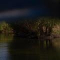 Fotografii din Delta cu Nikon D5100 - Foto 16 din 20