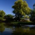 Noul Nikon D5100 accentueaza pana la trei culori si transforma restul imaginii in monocrom - Foto 17