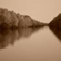 Fotografii din Delta cu Nikon D5100 - Foto 20 din 20