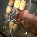 Crama LacertA Winery - Foto 2 din 10