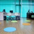 Fotografii din sediul Trilulilu - Foto 8 din 22