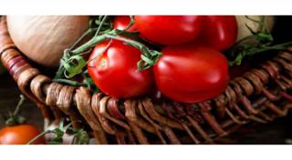 Plantatia de legume bio care promite rosii cu gustul de