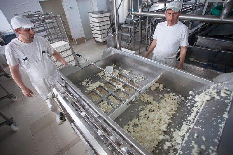Producatorul local de lactate Unilact Transilvania – afaceri in crestere cu 16% in 2015, la peste 14 milioane de lei