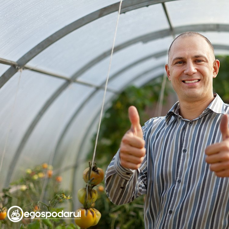 eGospodarul.ro, magazin online pentru gospodarii din Romania