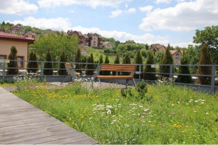 Terasa verde – o investitie catre viitor Odu Green Roof