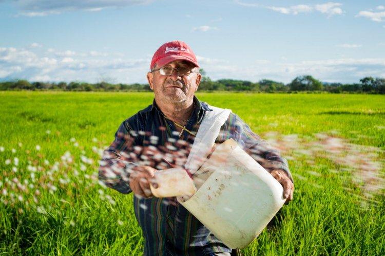 Semințele de legume de la Cropmarket schimba definiția agriculturii în România