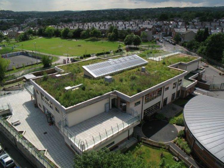 Explozia globala a sistemului de acoperis terasa verde - Cum au profitat strainii de popularele sisteme de vegetatie urbana?