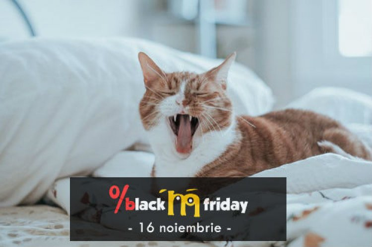Animax organizeaza Black Friday pentru animalul tau de companie