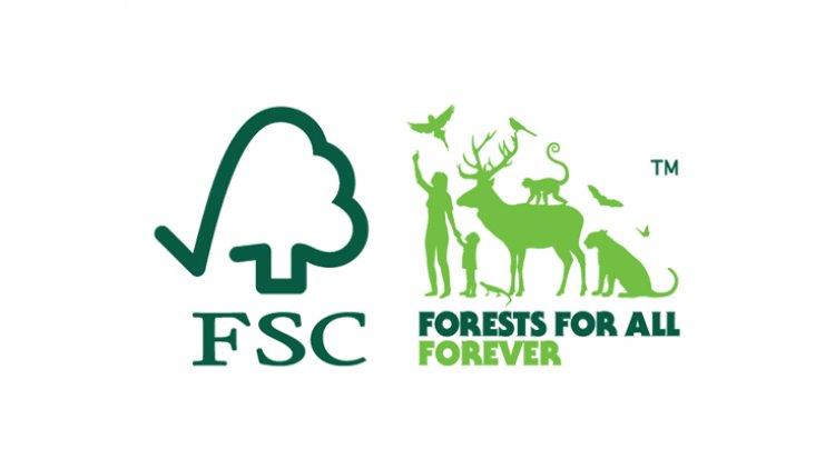Importanța certificării forestiere FSC pentru mediul înconjurător
