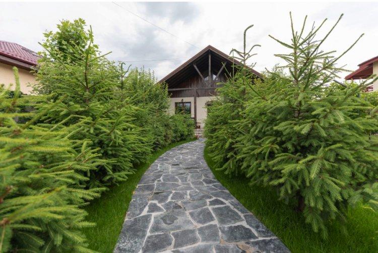 Piatra naturală, soluția sustenabilă pentru curți și grădină