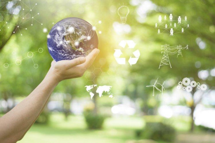 Măsurile pe care le pot lua companiile pentru protecția mediului înconjurător